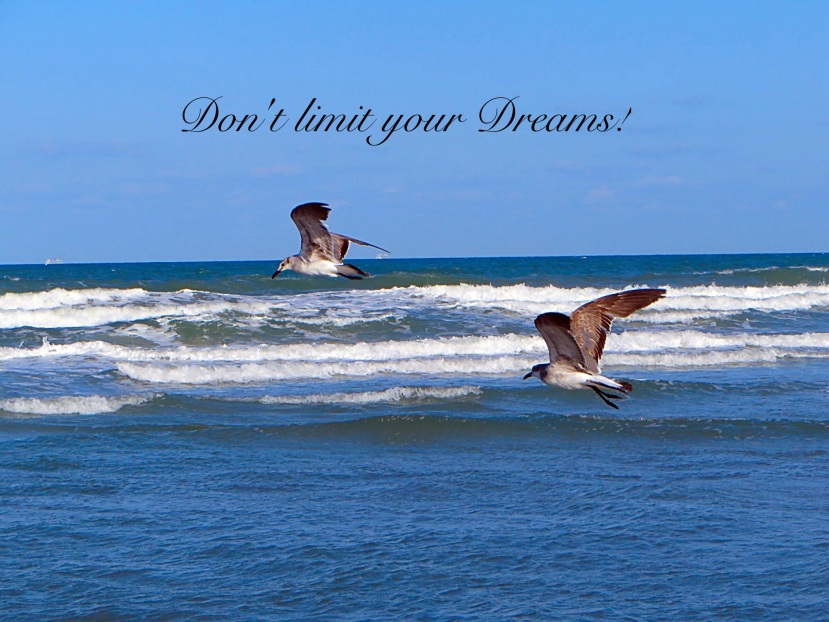 Don't Limit Your Dreams