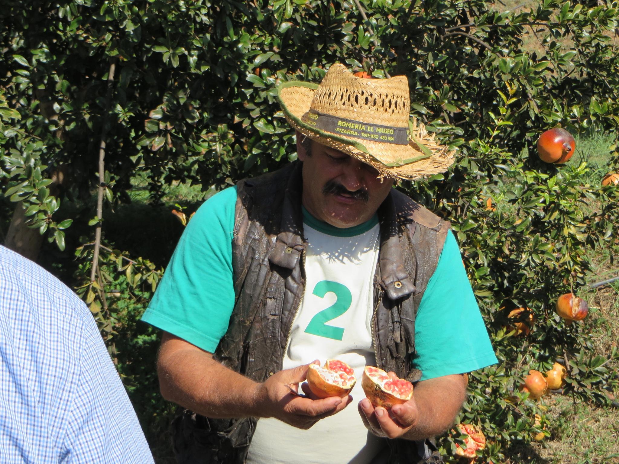 Malaga tour la finca de juanito travelmystories for Juanito makande malaga