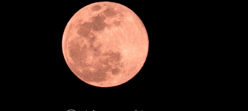 Vanishing Moon