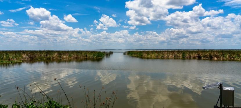 Lake Apopka WildlifeDrive